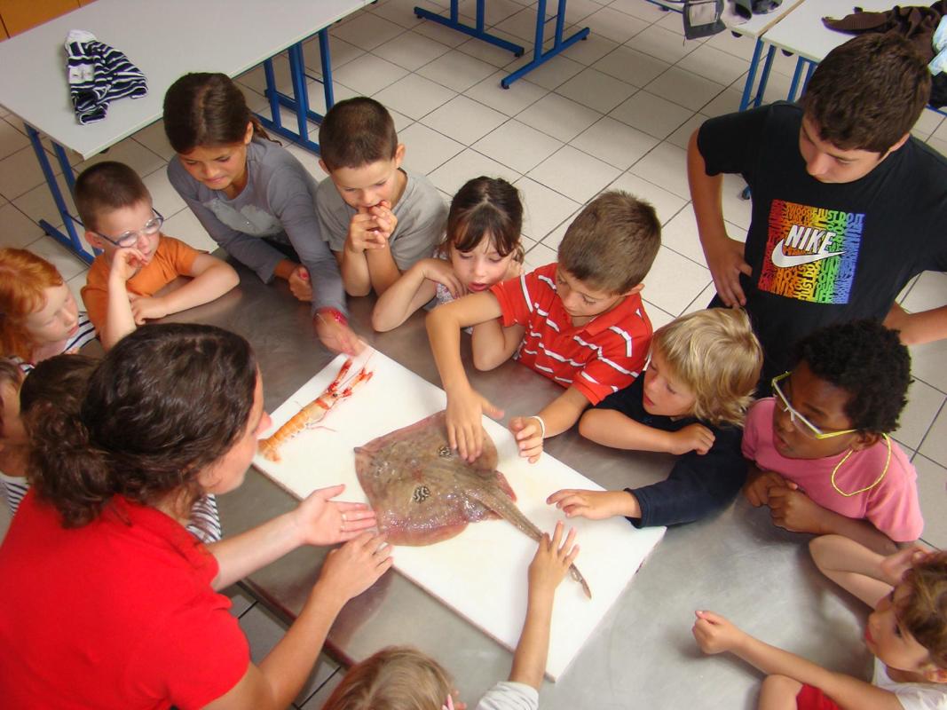 Atelier cuisine mini-chefs farceurs 3/6 ans